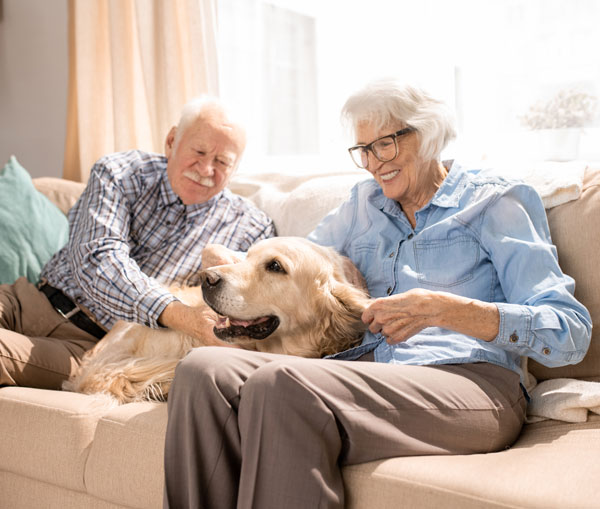 Crum and Forster offer Pet Insurance, too.